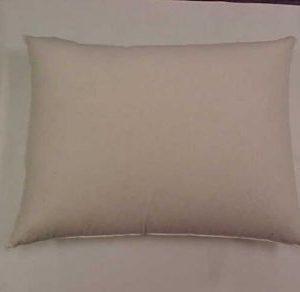 Pillow 100% Down